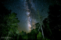 Milky Way & The Clearing